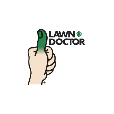 lawn doctor case study